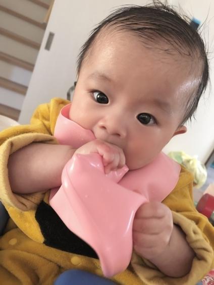 赤ちゃん生後6か月_写真2